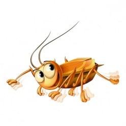 Επιτραπέζιο Κατσαρίδα (21338)